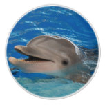 Cute Chattering Dolphin Ceramic Knob