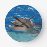 Cute Chattering Dolphin Round Clock